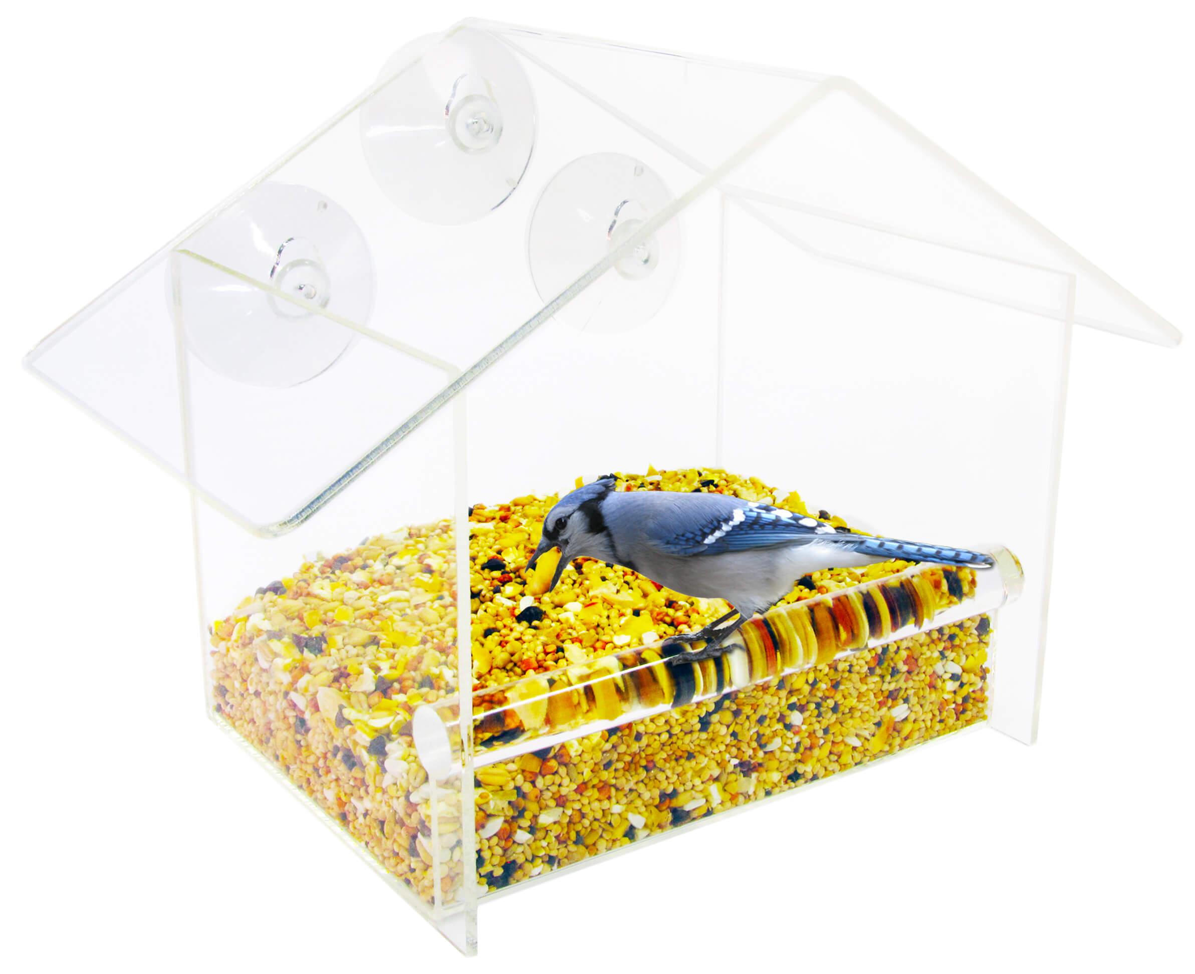 yankees x bird product droll saver feeder yellow seed